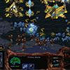 The original StarCraft is officially free to play