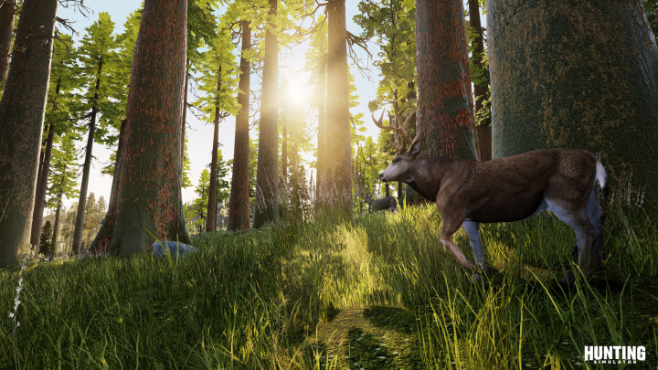 [Watch] Hunting Simulator releases new gameplay trailer showing off the hunt