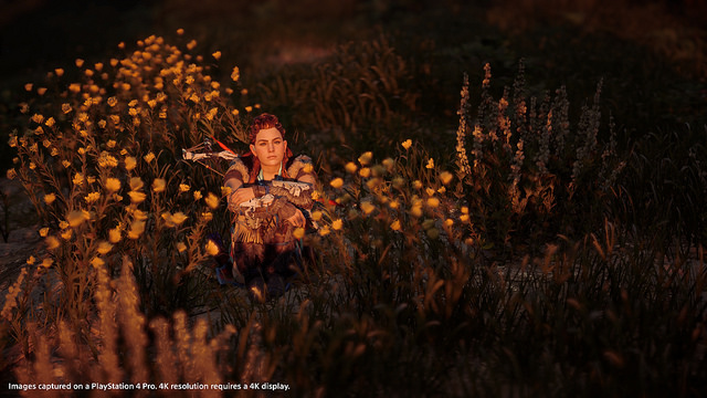 Patch for Horizon Zero Dawn Updates Photo Mode and More Next Week