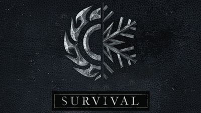Skyrim 'Survival Mode' DLC detailed