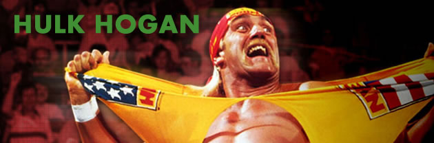 hulk hogan naughty