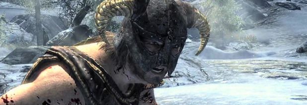 The Elder Scrolls V: Skyrim  - 873555