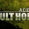 Ace Combat: Assault Horizon  - 874009