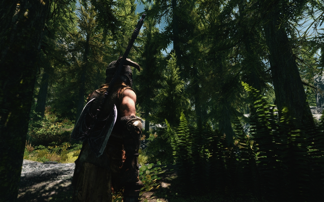 Confident ENB - A realistic ENB profile Skyrim Mod