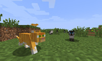 Article_list_minecraft-ocelot