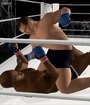 Pride Fighting Championships Image