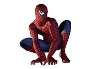 Spider-Man The Movie Image