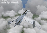 Combat Flight Simulator 3 Image