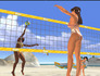 Summer Heat Beach Volleyball Image
