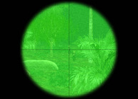 Line of Sight: Vietnam Image