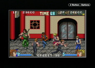 Double Dragon Advance Image