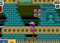 Shantae Advance Image