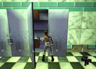 Tomb Raider Chronicles Image