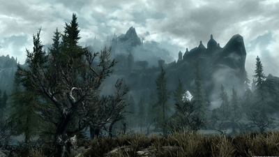 The Elder Scrolls V: Skyrim  - 923767
