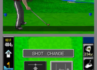 True Swing Golf Image