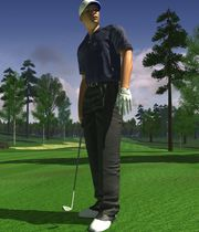ProStroke Golf: World Tour 2007 Boxart