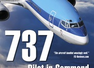 737 Pilot in Command Image