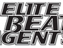 Elite Beat Agents Image