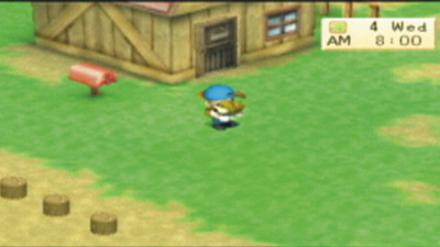 Harvest Moon: Boy & Girl Screenshot - 984453